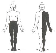 trattamento_piastre